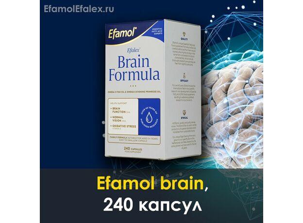 Эфамол брейн Efamol brain в капсулах, инструкция, отзывы, 240 капсул