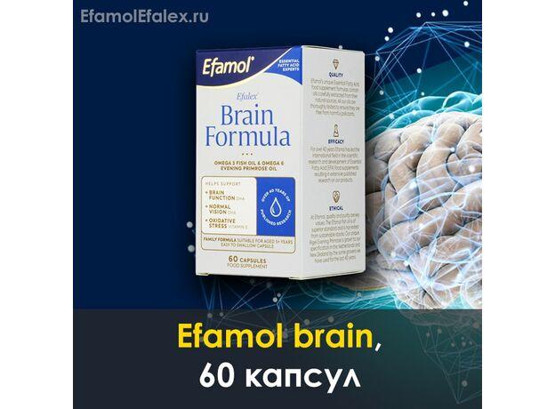Эфамол брейн Efamol brain в капсулах, инструкция, отзывы, 60 капсул